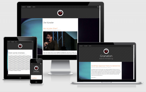 Developr WordPress Responsive Theme