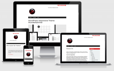 The Newswire WordPress Responsive Theme