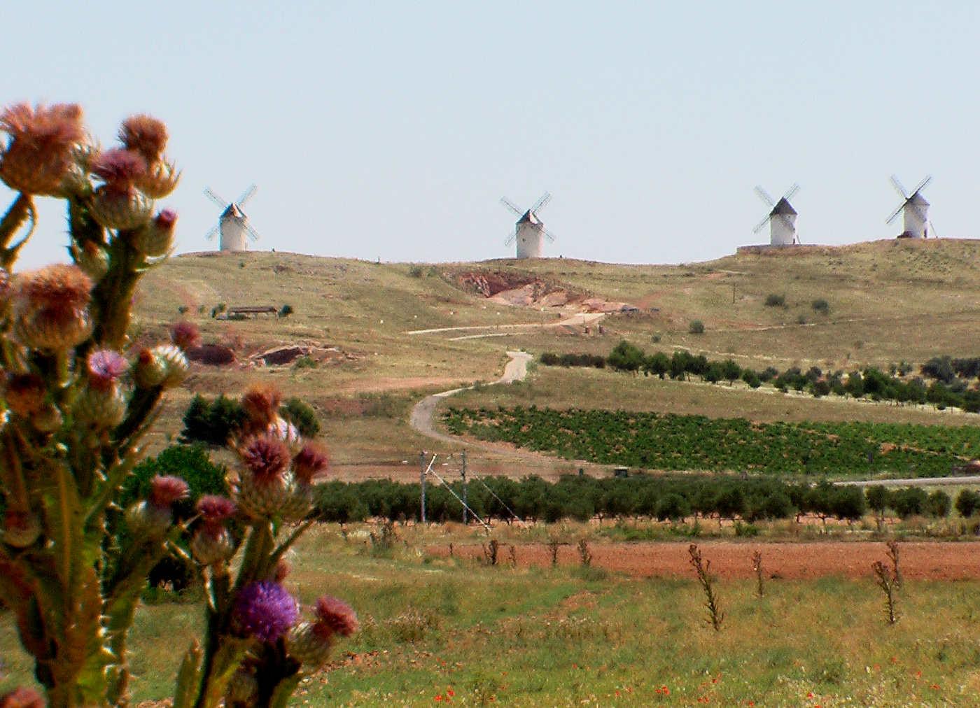Windmühlen in La Mancha, Spanien